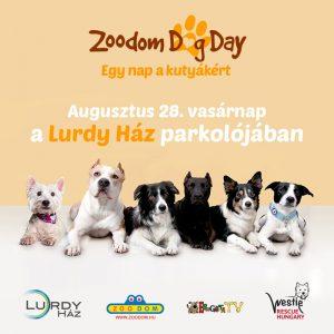 ZDD_FBposzt_lurdy_beharangozo